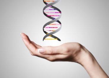 Hvað er epigenetics?