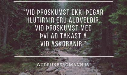 DAGLEGAR ÁSKORANIR